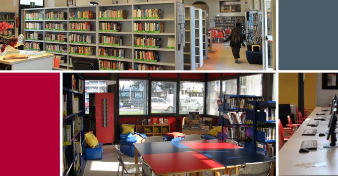 servizi-biblioteche_2015